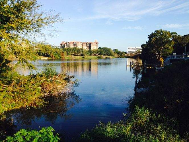 This site developed a Florida Man scoring system  Tampa Bay