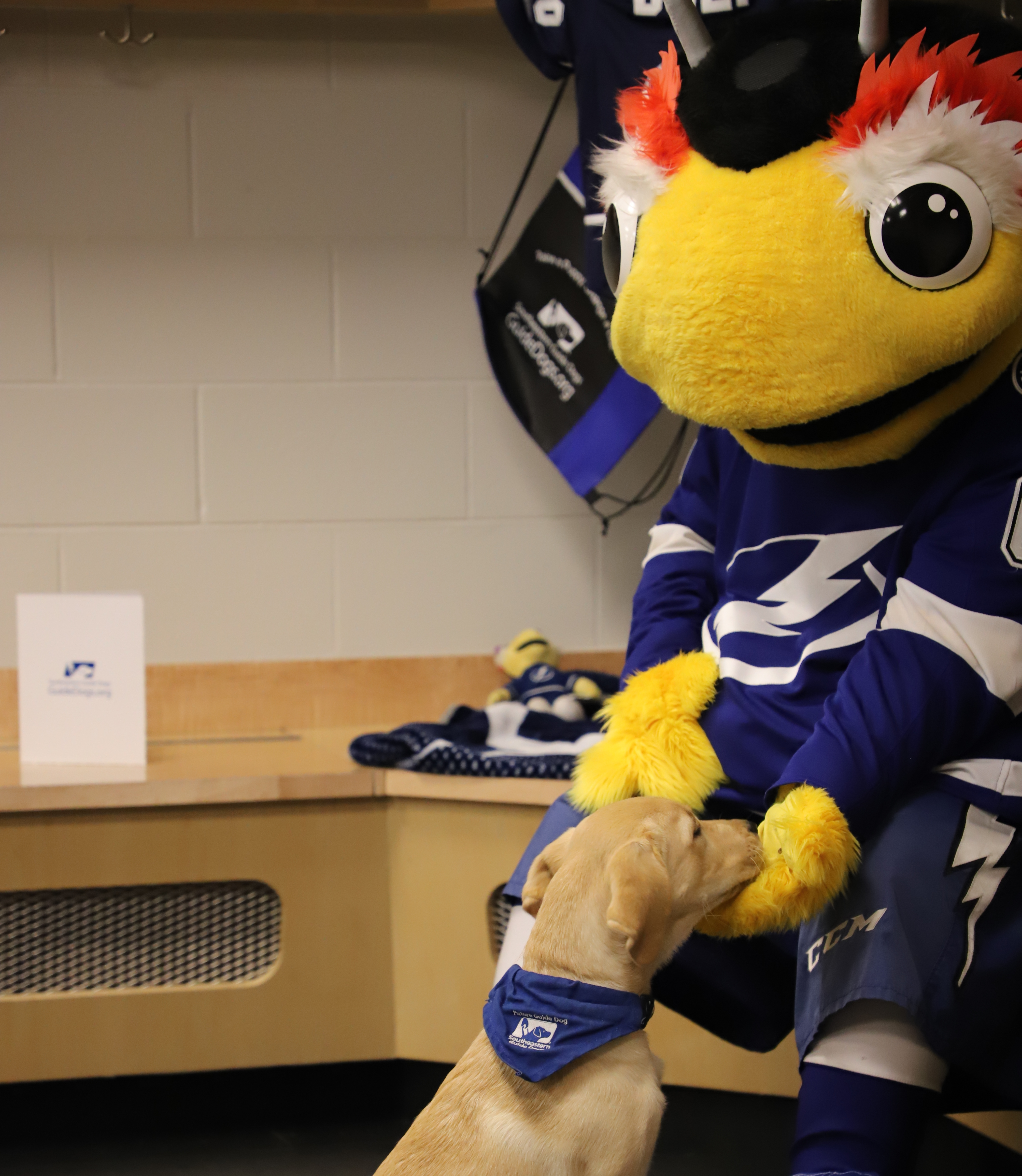 Lightning Welcome New Puppy Bolt As Team Ambassador