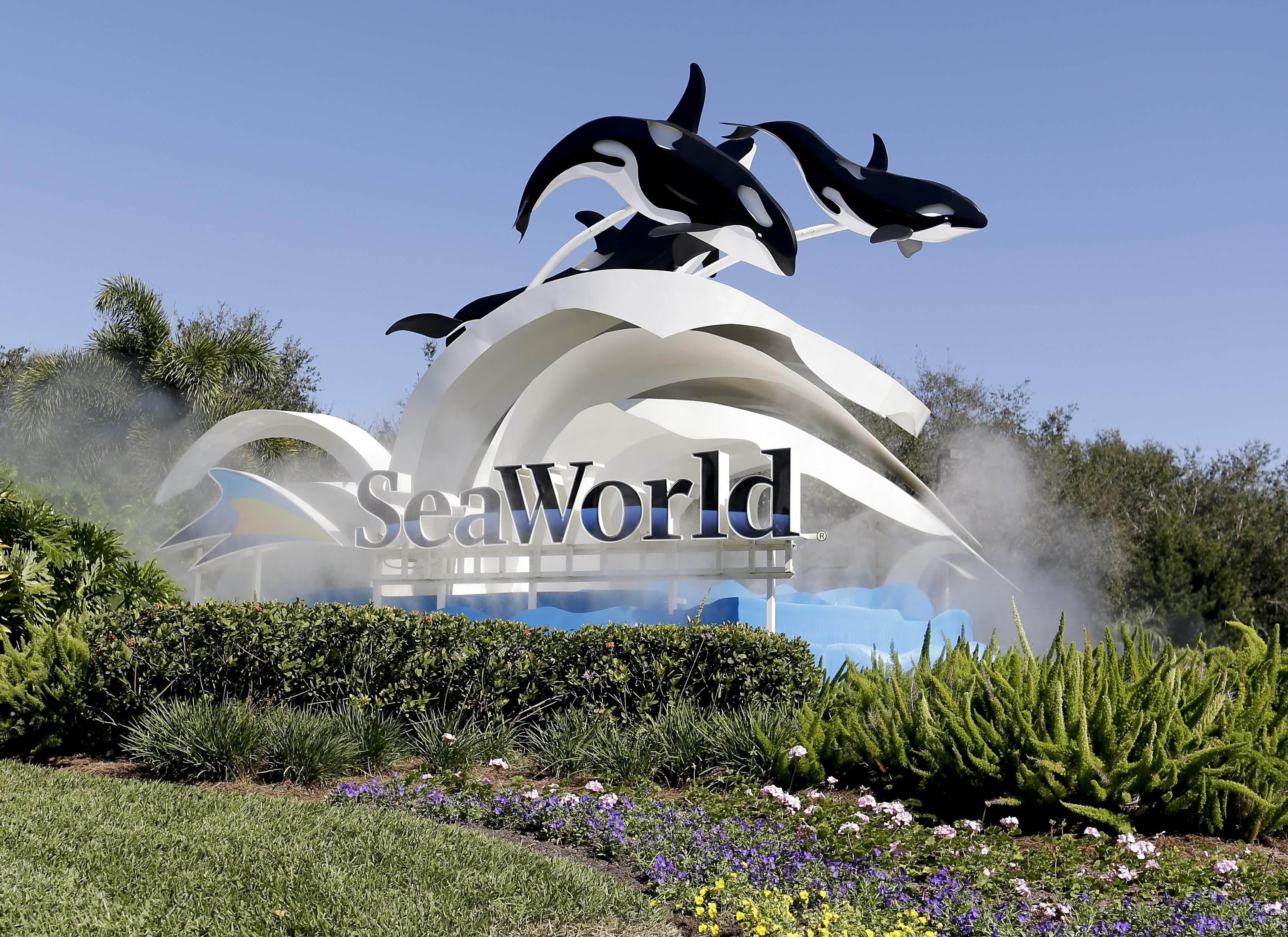 Seaworld Busch Gardens In Tampa Hit With Layoffs