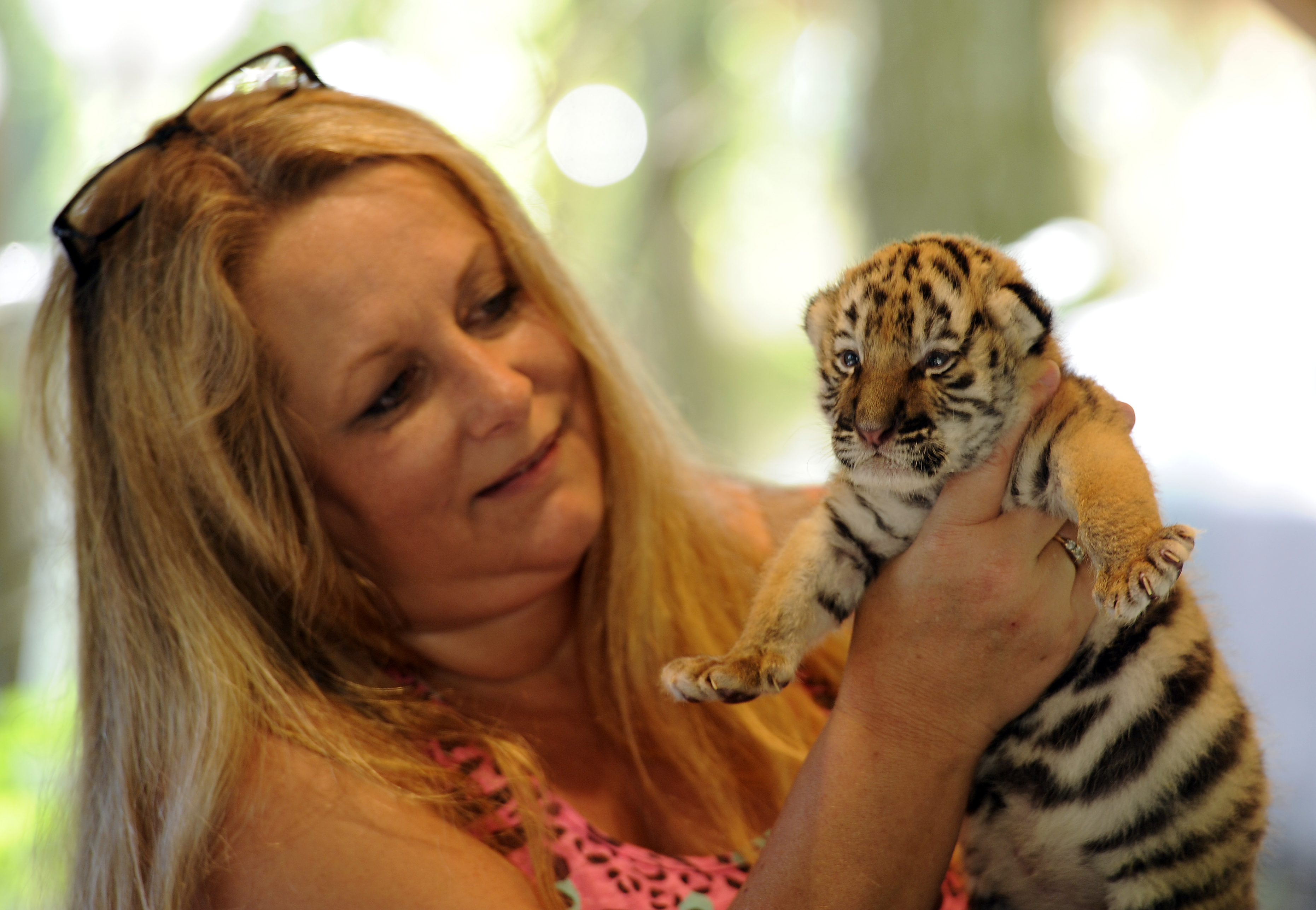 Dade City's Wild Things owner arrested on fraud charges
