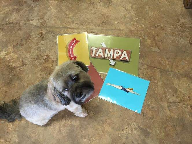 Shop local with our Tampa Bay area holiday gift guide
